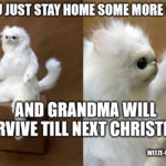 Meme: Surviving Christmas and New Years Eve is not that hard